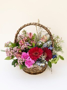 Arrangements: Joyful Surprise