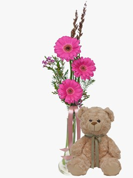 Arrangements: Pink Gerberas in Small Glass Vase with Teddy