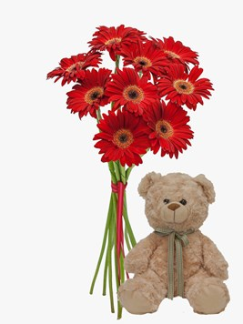Bouquets: Romantic Red Gerberas with Teddy